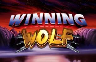 winning wolf betfair casino